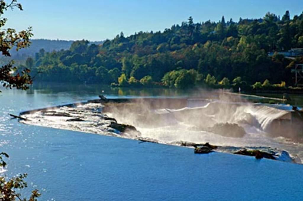 Willamette-Falls_1024x680