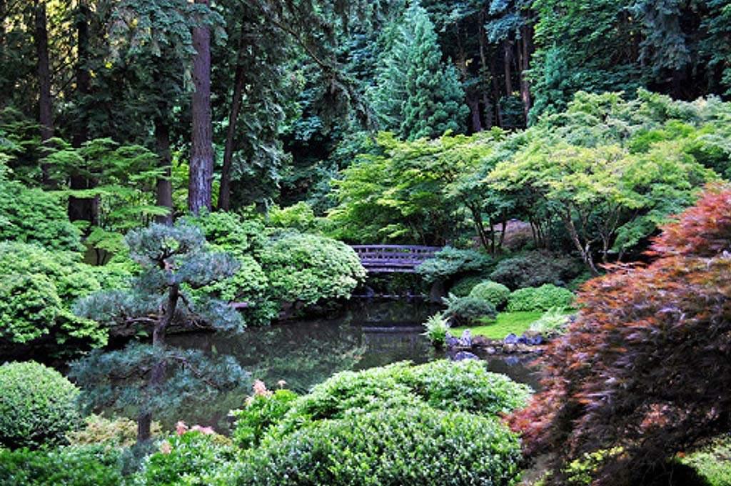 Marion_Oregon-Gardens-1