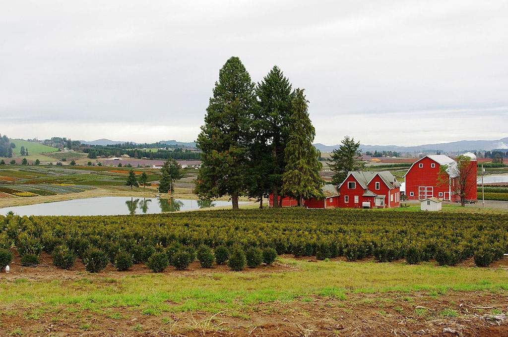 Multnomah_1280px-Nursery_with_red_buildings_in_rural_Washington_County_Oregon_1024x680