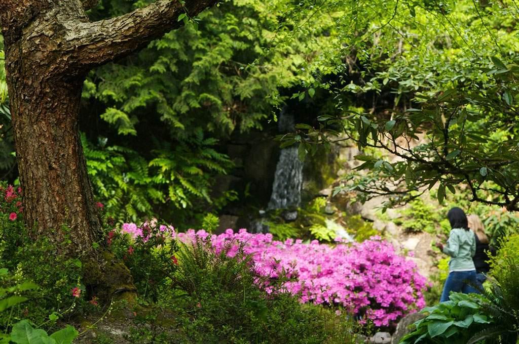 Multnomah_Gardens_1024x680