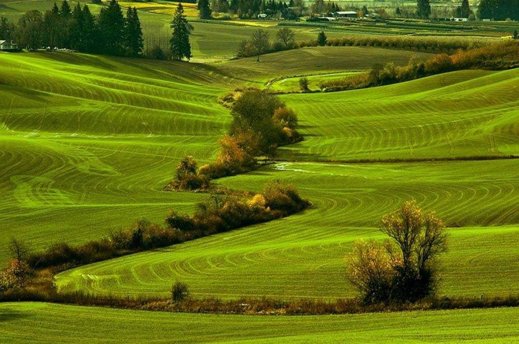 Washington-County_Farm-Lands