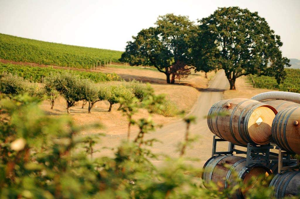 Washington-County_Wine-Barrels